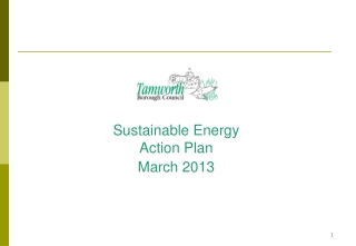 Sustainable Energy Action Plan March 2013
