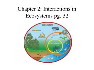 Chapter 2: Interactions in Ecosystems pg. 32