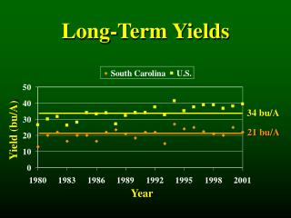 Long-Term Yields