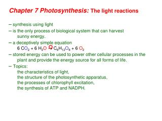 Chapter 7 Photosynthesis:  The light reactions