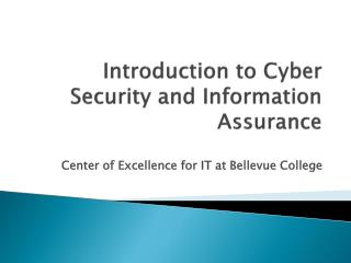 Introduction to Cyber Security and Information Assurance
