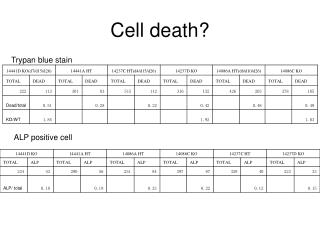 Cell death?