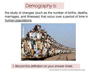 Demography is: