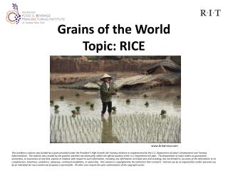 Grains of the World Topic: RICE