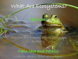 What Are Ecosystems?