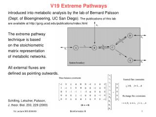 V19 Extreme Pathways