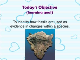Today's Objective (learning goal)