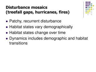 Disturbance mosaics (treefall gaps, hurricanes, fires)