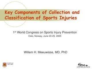 Key Components of Collection and Classification of Sports Injuries