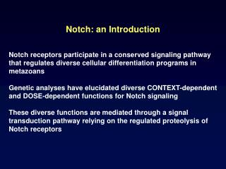 Notch: an Introduction