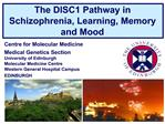 The DISC1 Pathway in Schizophrenia, Learning, Memory and Mood