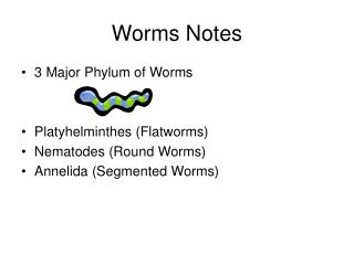 Worms Notes