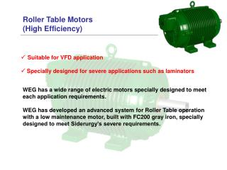 Roller Table Motors  (High Efficiency)