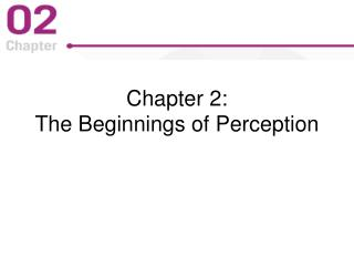 Chapter 2:  The Beginnings of Perception