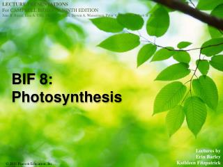 BIF 8:  Photosynthesis