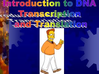 Introduction to DNA  Transcription  and Translation