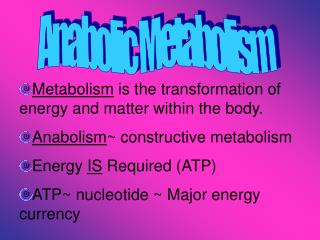 Metabolism  is the transformation of energy and matter within the body.  Anabolism ~ constructive metabolism Energy  IS
