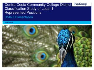 Contra Costa Community College District Classification Study of Local 1 Represented Positions
