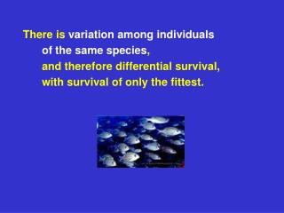 There is  variation among individuals  	of the same species ,