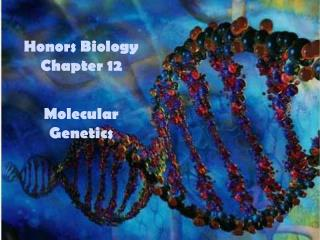 Honors Biology Chapter 12 Molecular Genetics