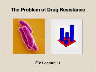 The Problem of Drug Resistance