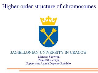 Higher-order structure of chromosomes