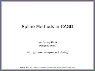 Spline Methods in CAGD