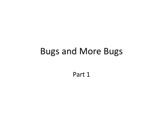 Bugs and More Bugs