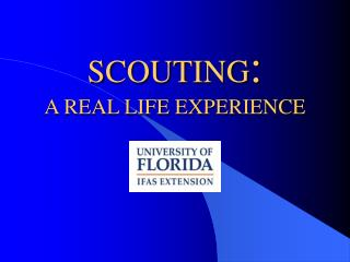 SCOUTING : A REAL LIFE EXPERIENCE