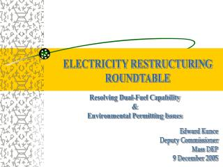 ELECTRICITY RESTRUCTURING ROUNDTABLE