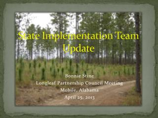 State Implementation Team Update
