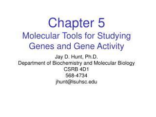 Chapter 5 Molecular Tools for Studying Genes and Gene Activity