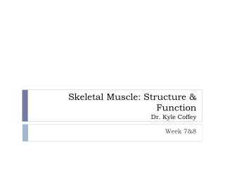 Skeletal Muscle: Structure & Function Dr. Kyle Coffey