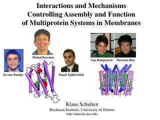 Interactions and Mechanisms Controlling Assembly and Function of Multiprotein Systems in Membranes