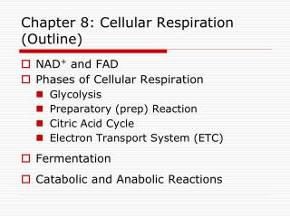 Chapter 8: Cellular Respiration (Outline)