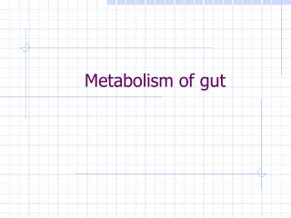 Metabolism of gut