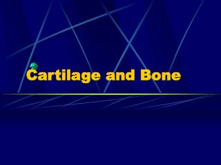Cartilage and Bone