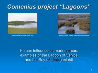 Human influence on marine areas: examples of the Lagoon of Venice  and the Bay of Liminganlahti