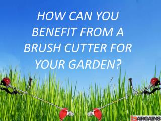 Before Using a Brush Cutter You Need to Know Some Safety Tip