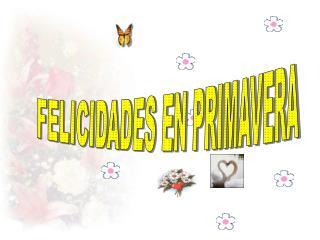 FELICIDADES EN PRIMAVERA