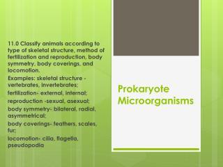Prokaryote Microorganisms