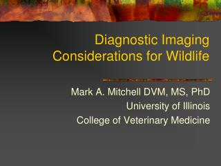 Diagnostic Imaging Considerations for Wildlife