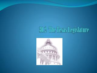30.2  The Texas Legislature