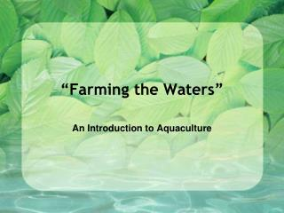 """Farming the Waters"""
