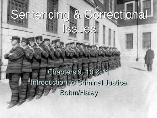 Sentencing & Correctional Issues