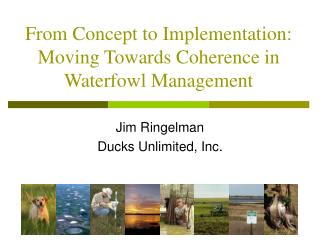 From Concept to Implementation: Moving Towards Coherence in Waterfowl Management