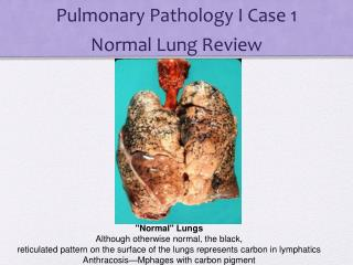 Pulmonary Pathology I Case 1 Normal Lung Review