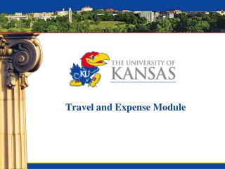 Travel and Expense Module