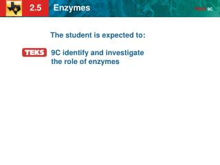 The student is expected to: 9C identify and investigate the role of enzymes