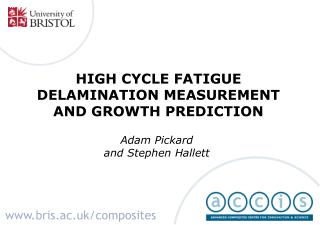 HIGH CYCLE FATIGUE DELAMINATION MEASUREMENT AND GROWTH PREDICTION